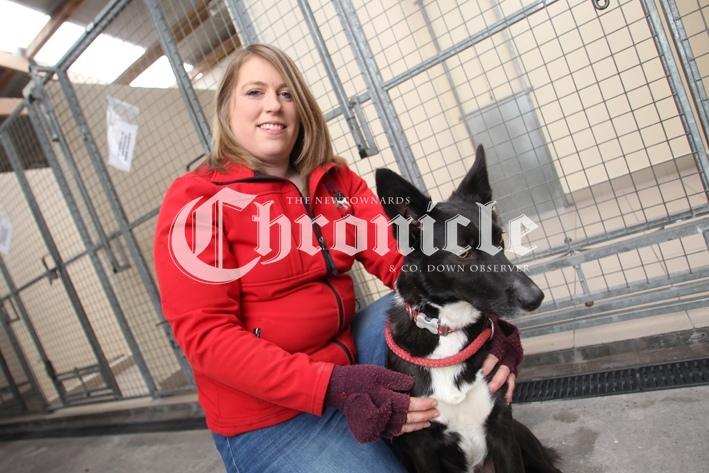 B18-14-1-21-Bblack-dog-kennel