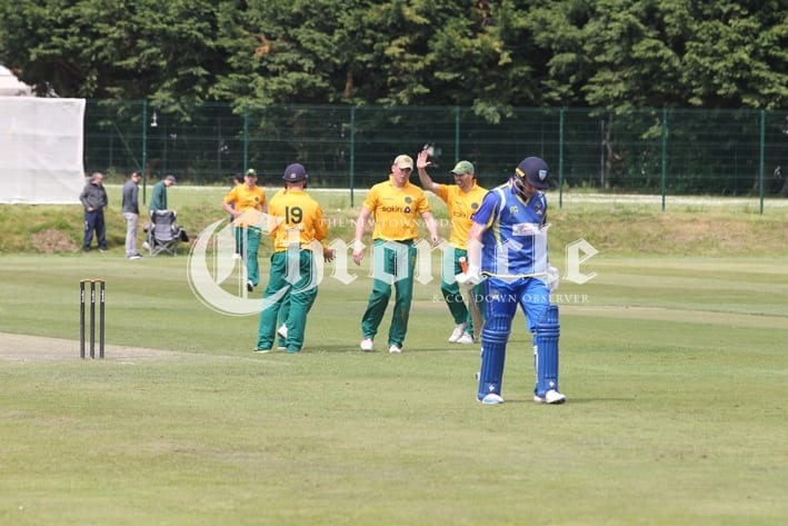 84716421-b34-6-6-19-ndown-cricket